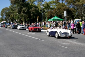Part of the over 500 vehicles that paraded in McLaren Vale.